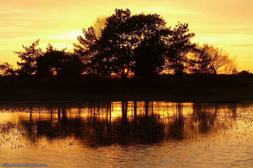 photoblog image Sunset at Hatchett Pond