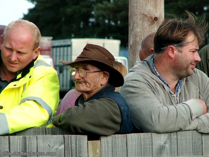 photoblog image At the Pony Sales ~ People #2